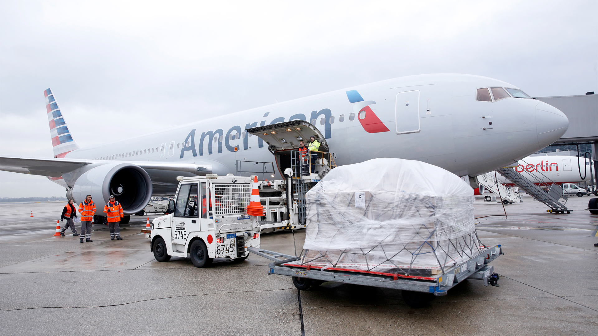 American Airlines Cargo U S Military Pet Discount